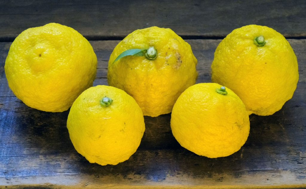 This image has an empty alt attribute; its file name is yuzu-2-1024x633.jpg